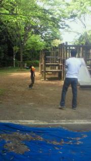 公園で野球?!